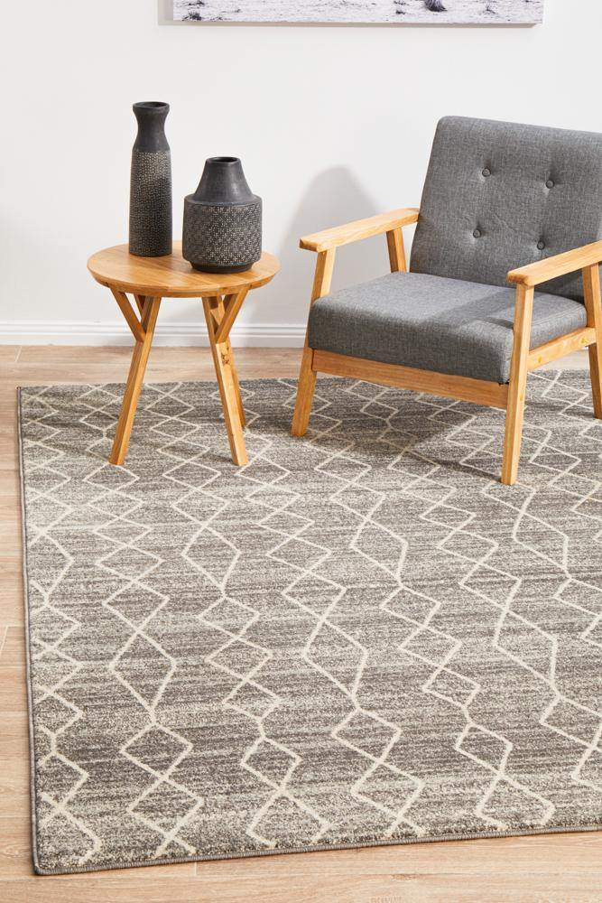 Evoke Remy Silver Transitional Rug - Housethings