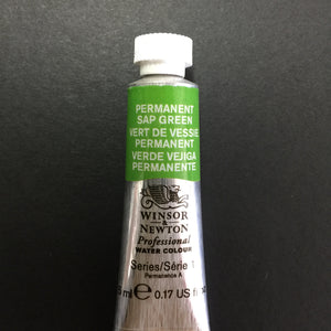 Winsor & Newton Professional Watercolour Permanent Sap Green - Series 1 - 5ml tube