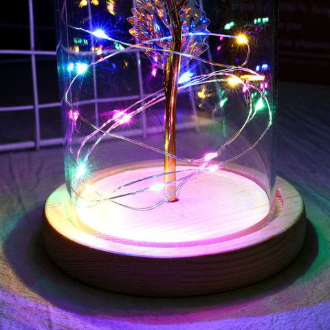 Best Gift Ultimate Symbol Galaxy Enchanted Rose LED Glass Display