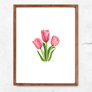 Pink Tulips Print