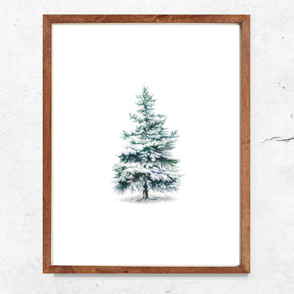 Winter Evergreen Tree Print