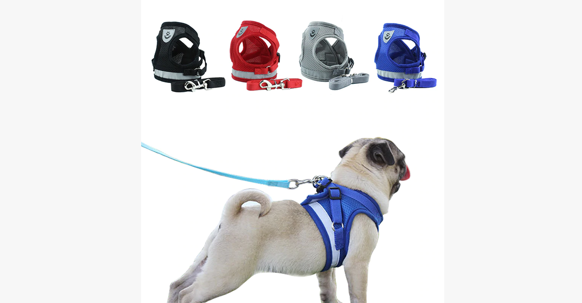 Dog Mesh Harness