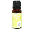 Eucalyptus Essential Oil, 10ml