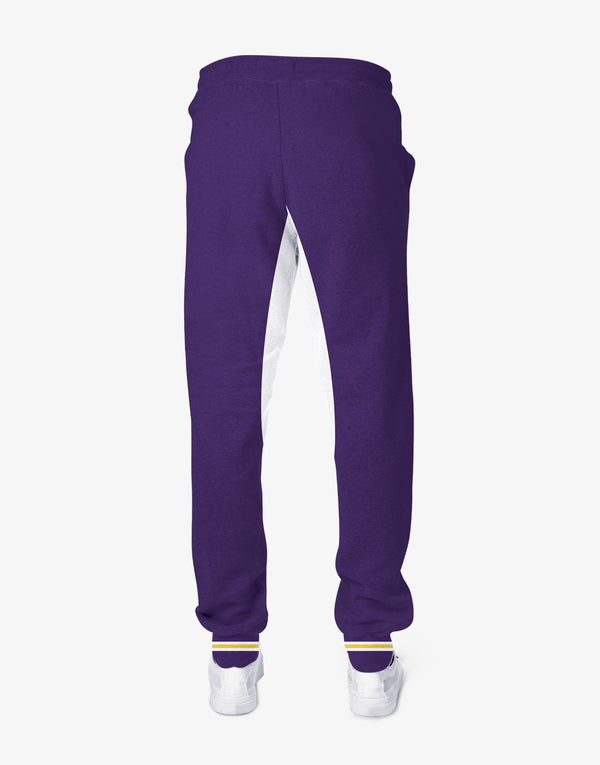 MEN'S KKR OFFICIAL 2019 JOGGER PURPLE