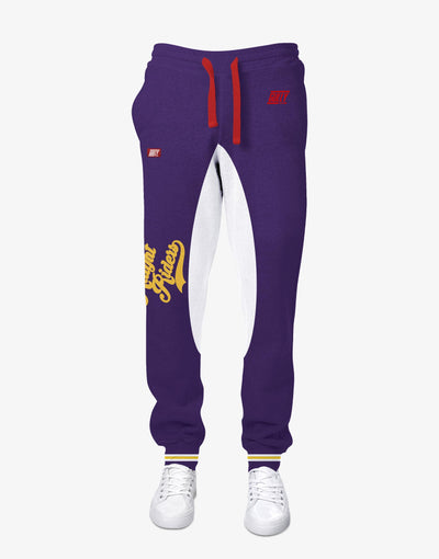 GULLY X KKR OFFICIAL PURPLE JOGGER