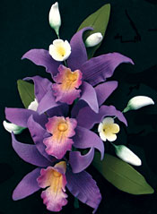 Laelia Orchid Spray 6pcs