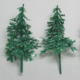 Evergreen Fir Trees Picks -3