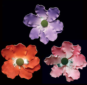 Anemone - Mixed Colors - 8 ct