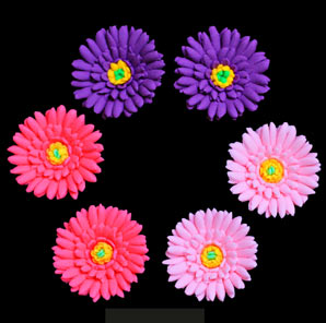Aster Flowers - Assorted Colors- 36 ct