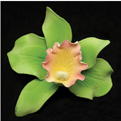 Cattleya Single - Small Green 50 pieces