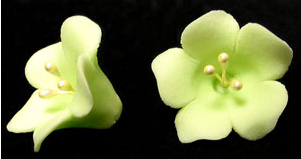Fruit Blossom Single - Light Green 110 pieces