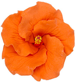 Hibiscus Flower - Large Orange - 9ct