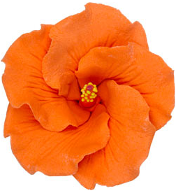 Hibiscus Flower - Medium Orange - 16ct