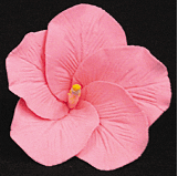 Hibiscus Flower - Medium Pink - 16ct