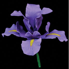 Iris on Wire - 9 pieces