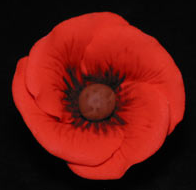 Poppy Flower on Wire-Red with Black Centers - 25 ct