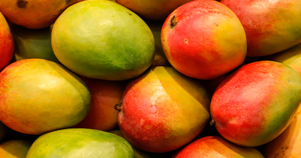 How do you know if your mango is ripe?