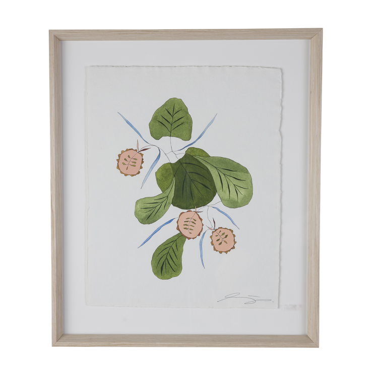 Fig Leaf Botanical, Lindsey J. Porter
