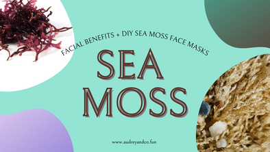 Sea Moss Facial Benefits for Healthy Skin + 3 DIY Sea moss facial Recipes