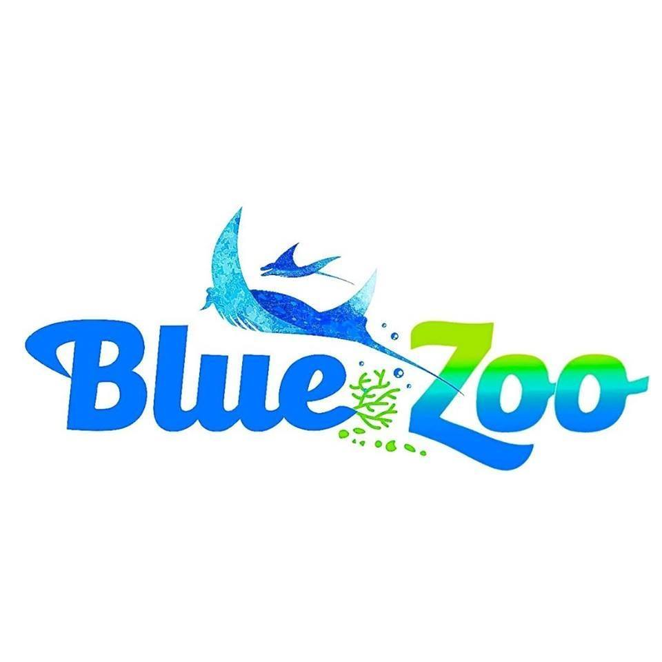 Shark diving experience with ScubaBros at Blue Zoo