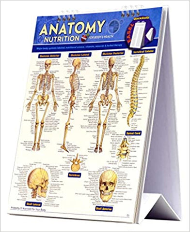 Anatomy and Nutrition Easel