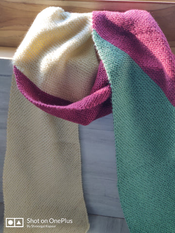 Three colours Woolen Scarf