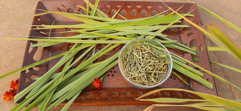 Organic Lemongrass (Dried)
