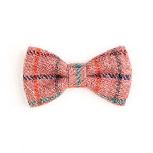 Orwell and Browne Bow Tie