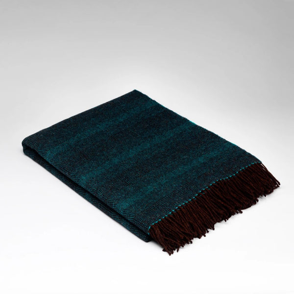 McNutt supersoft wool throw mint crisp