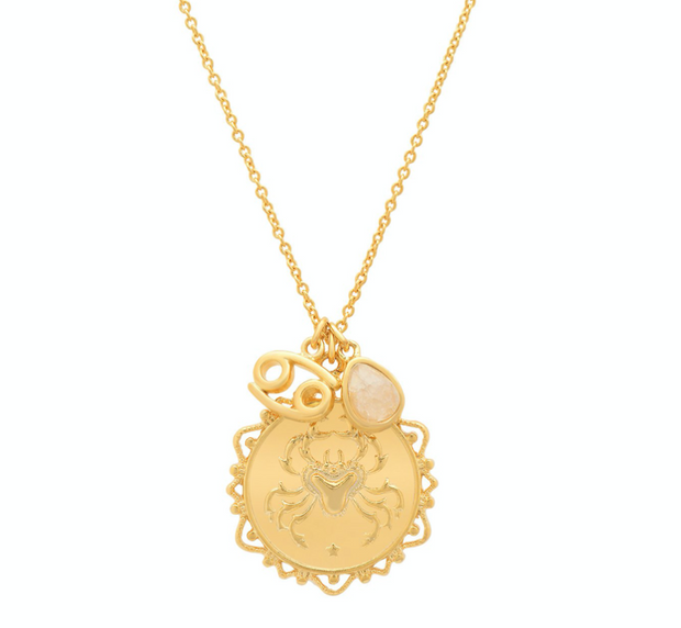 Tai Zodiac Charm Necklace