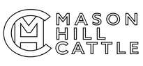 Mason Hill Cattle