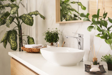 Choosing-the-right-house plants-for-your-home-image-bathroom
