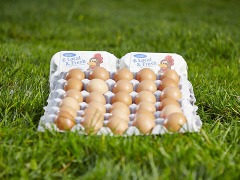 Large free range eggs