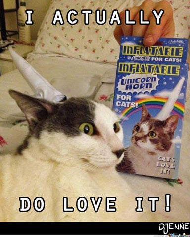 unicorn cat meme