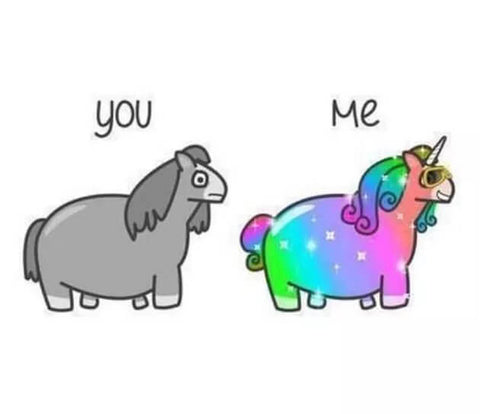 you vs me unicorn