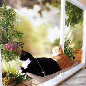 Cute Cat Window Hammock