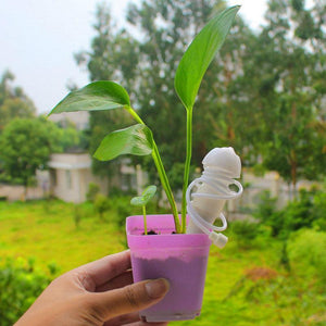Automatic Plant Watering Stake(10 pieces)