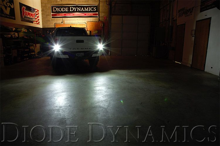 Diode Dynamics Reverse Lights Bulbs (2004-2021)