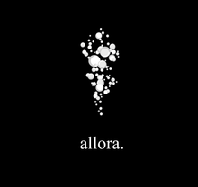 Load image into Gallery viewer, Allora