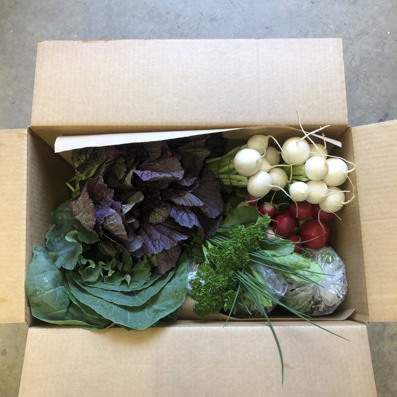 18 week FAMILY CSA Vegetable Subscription- BASIC ($40/week) Free Delivery*