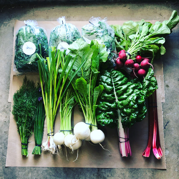18-week FAMILY CSA Vegetable Box ($35/week) Limited Free Delivery*