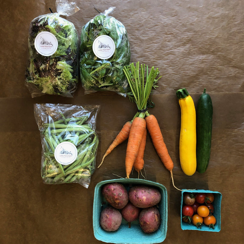 18 week PETITE CSA Vegetable Box ($25/week) Limited Free Delivery*
