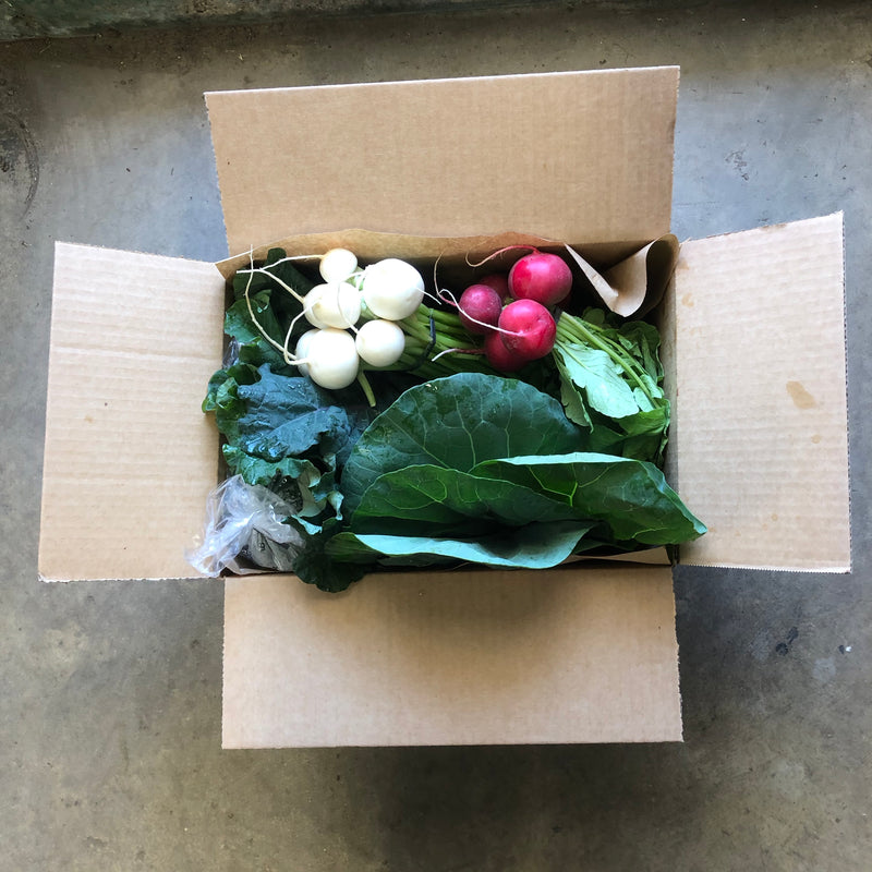 4 Week Petite CSA Vegetable Subscription- BASIC ($25/week)