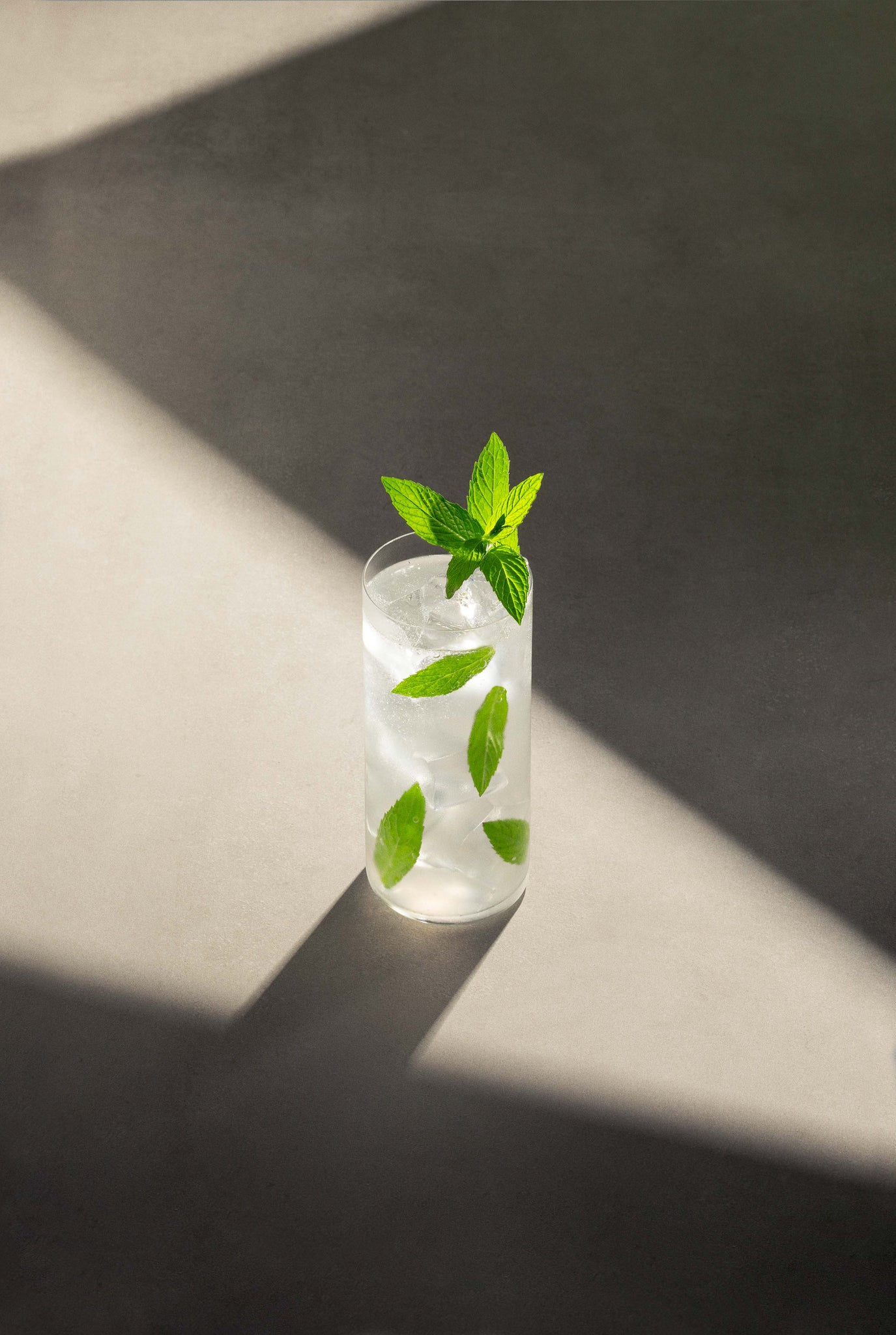 Black Lines Mojito cocktail in a clear highball glass with cubed ice and garnished with mint leaves