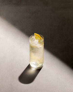 Black Lines Elderflower Collins cocktail in a highball glass with cubed ice garnished with a lemon slice.