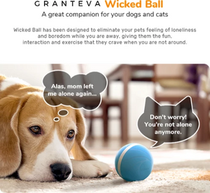 Wicked Ball - Fun Toys & Dog Friends