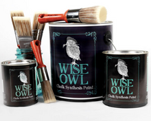 Load image into Gallery viewer, Wise Owl Chalk Synthesis Paint