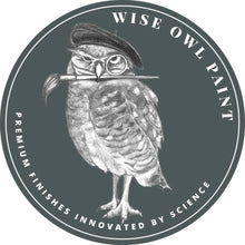 Load image into Gallery viewer, Wise Owl One Hour Enamel