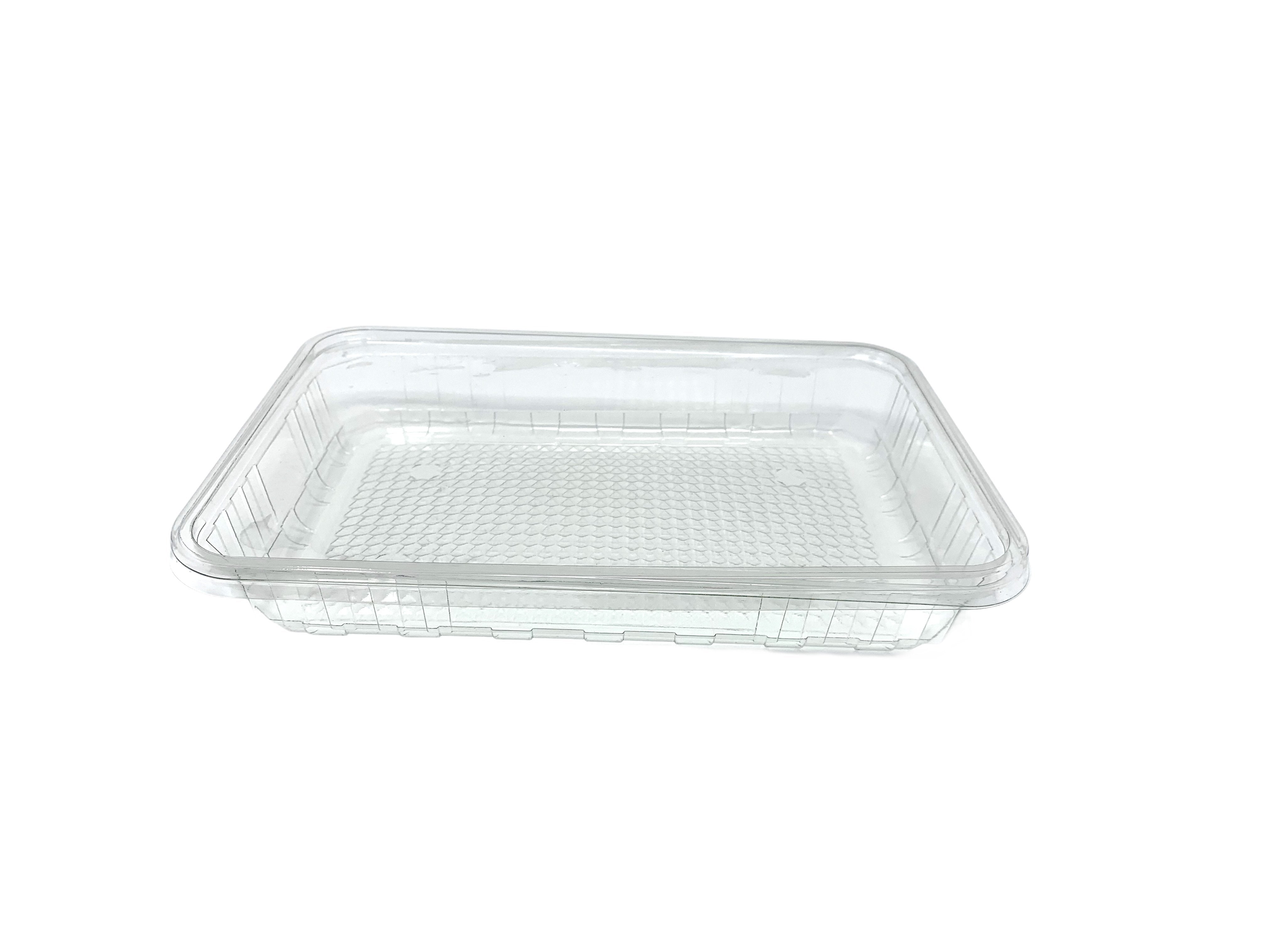 270x180x40 Bakery Container Bases & Lids - Gafbros