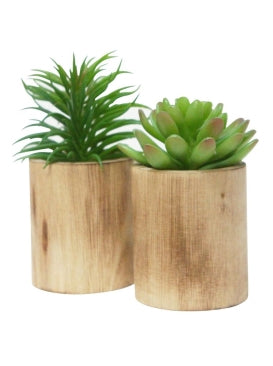 2 ASST SML SUCCULENT IN WOODEN PLANTER
